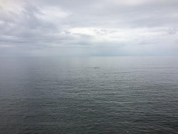 雨晴海岸11