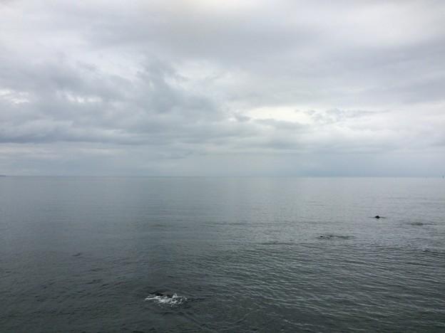 雨晴海岸12