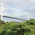 Photos: 新湊大橋3
