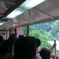 Photos: 黒部峡谷鉄道 車窓6