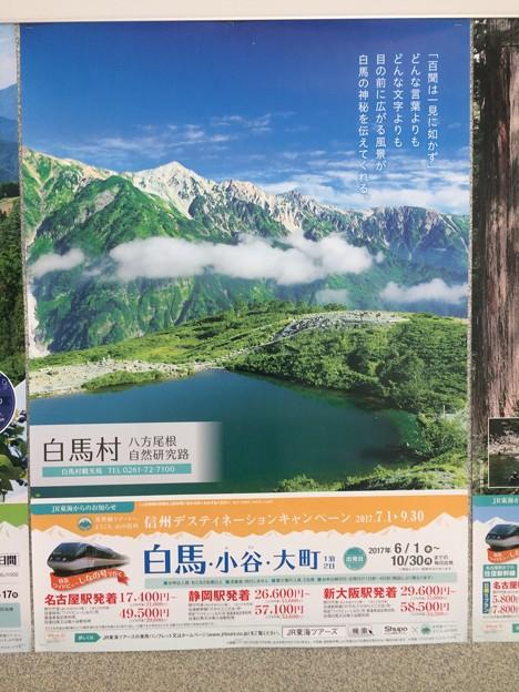 JR東海のポスター4 ~白馬~