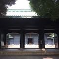 Photos: 湯島聖堂?1