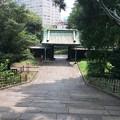 Photos: 湯島聖堂?2