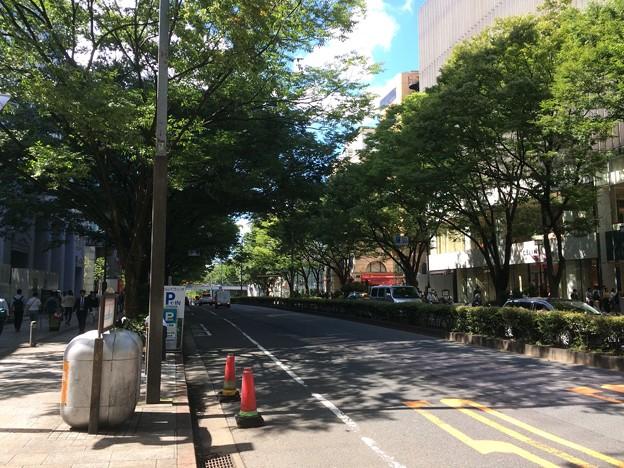 Photos: 表参道2