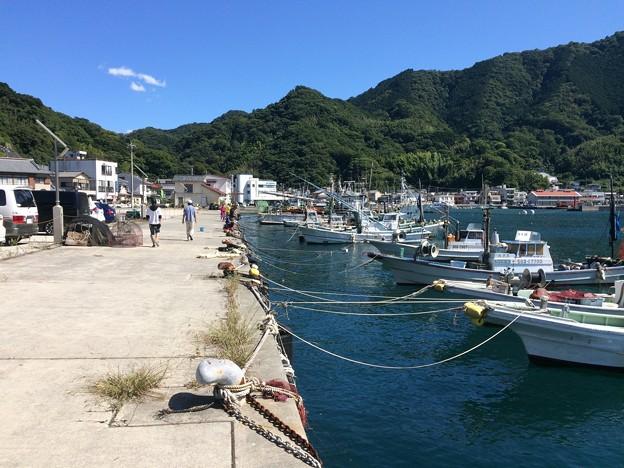 いけすや 内浦小海の漁港1