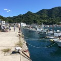 Photos: いけすや 内浦小海の漁港1