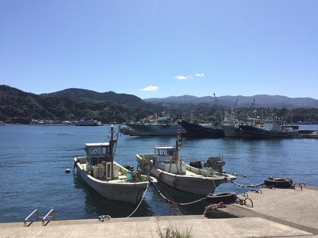 Photos: いけすや 内浦小海の漁港2