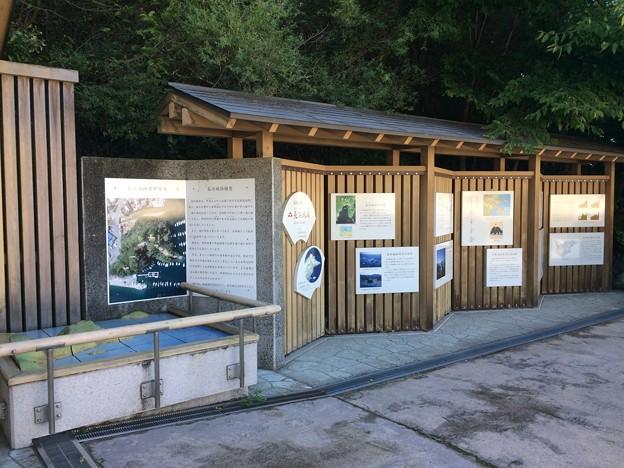 Photos: 長浜城跡1