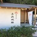 Photos: 長浜城跡2