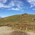 箱根駒ケ岳ロープウェイ 山頂3