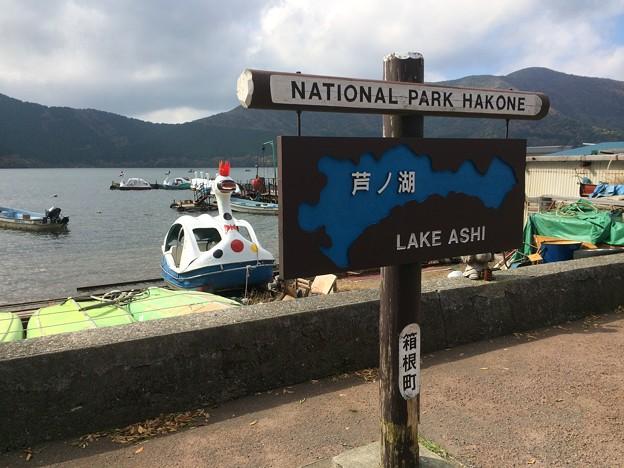 芦ノ湖2017 ~湖尻2~