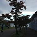 箱根園の紅葉?2