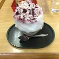 Photos: 結局かき氷を食す