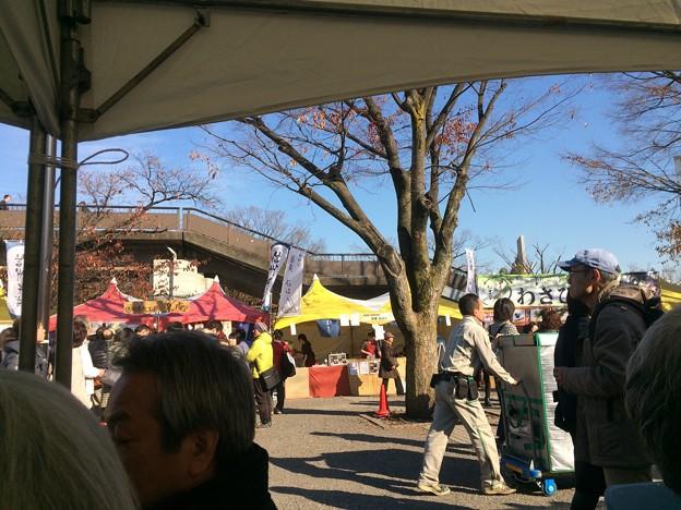 Photos: 代々木公園 そばのフェス2