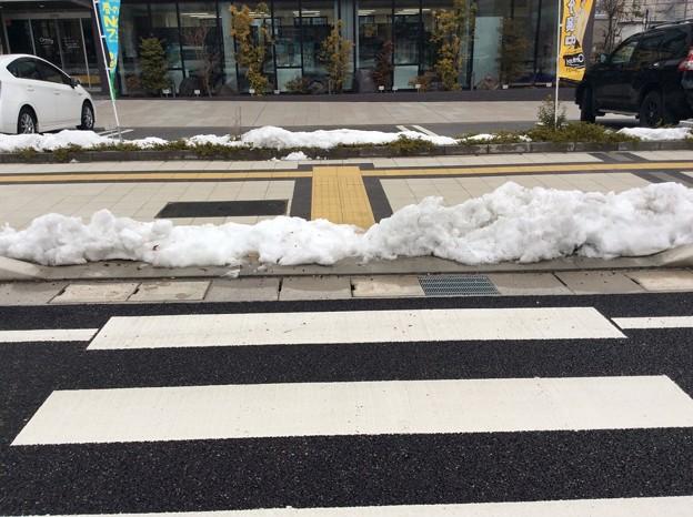 Photos: 彦根の残雪7