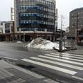 Photos: 彦根の残雪8