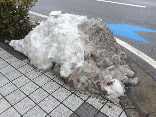 彦根の残雪10