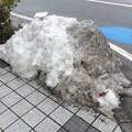 Photos: 彦根の残雪10