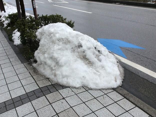 彦根の残雪11