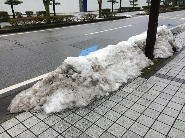 彦根の残雪12