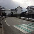 Photos: 彦根城内1