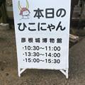 Photos: 本日のひこにゃん