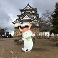 彦根城とひこにゃんで記念撮影