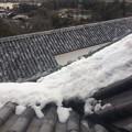 彦根城に残雪