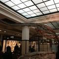 国立科学博物館1