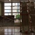 福島駅6 ~わらじまつり~