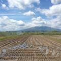 津軽平野と岩木山2