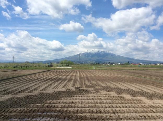 津軽平野と岩木山3