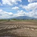Photos: 津軽平野と岩木山3
