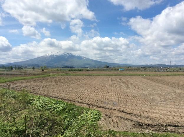 津軽平野と岩木山4