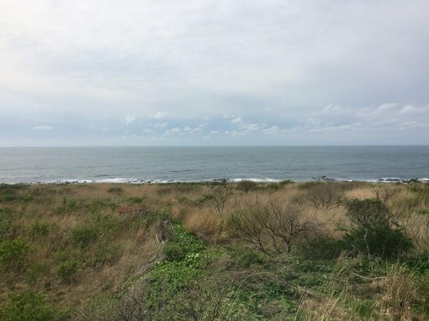 五能線から見える海15