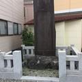 Photos: 地震窪3