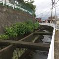 Photos: 牧堰用水