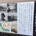 Photos: 長嶋茂雄ロード2