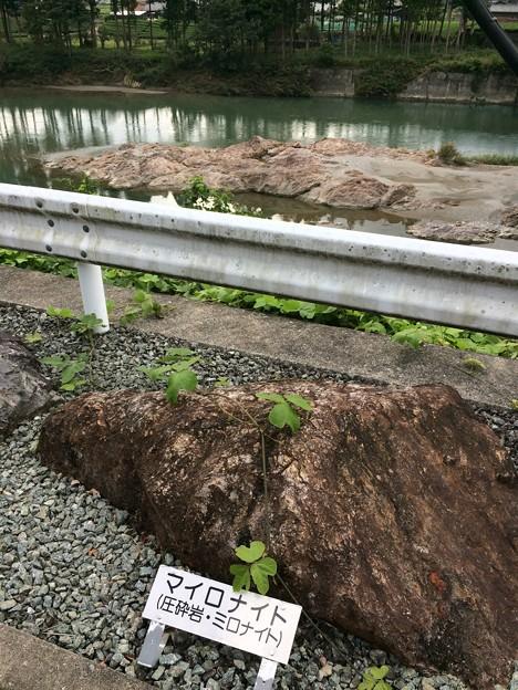 Photos: 中央構造線粥見観測地5
