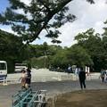 Photos: 伊勢神宮5