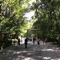Photos: 伊勢神宮6