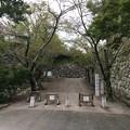 Photos: 松阪城跡