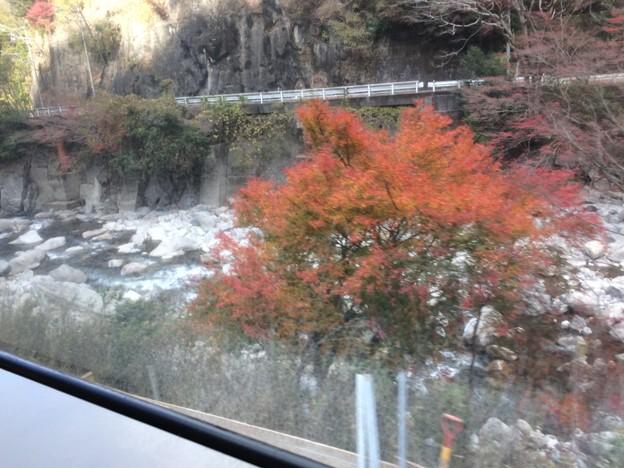 名松線沿線風景1 ~紅葉~