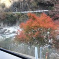 Photos: 名松線沿線風景1 ~紅葉~