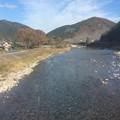 Photos: 樽見鉄道沿線風景2