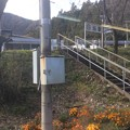 Photos: 日当駅1