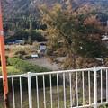 Photos: 水鳥駅1