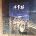 Photos: 樽見駅6