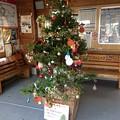 窪川駅10 ~クリスマスツリー~