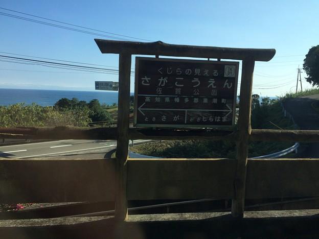 佐賀公園駅1